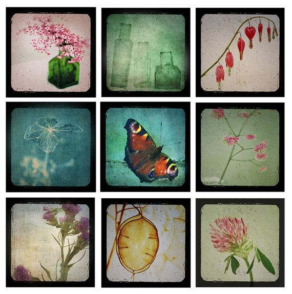 """Complete """"Through the Viewfinder"""" mini print collection by PaperSnapdragon, £65.00"""
