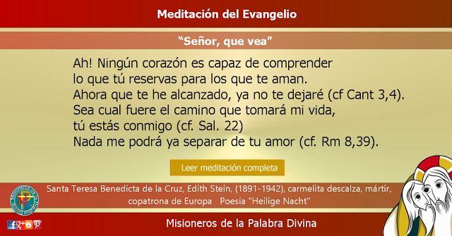 """MISIONEROS DE LA PALABRA DIVINA: MEDITACIÓN DEL EVANGELIO - """"Señor, que vea"""""""