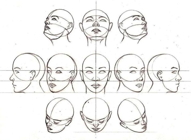 Head Positions | skethes | Pinterest