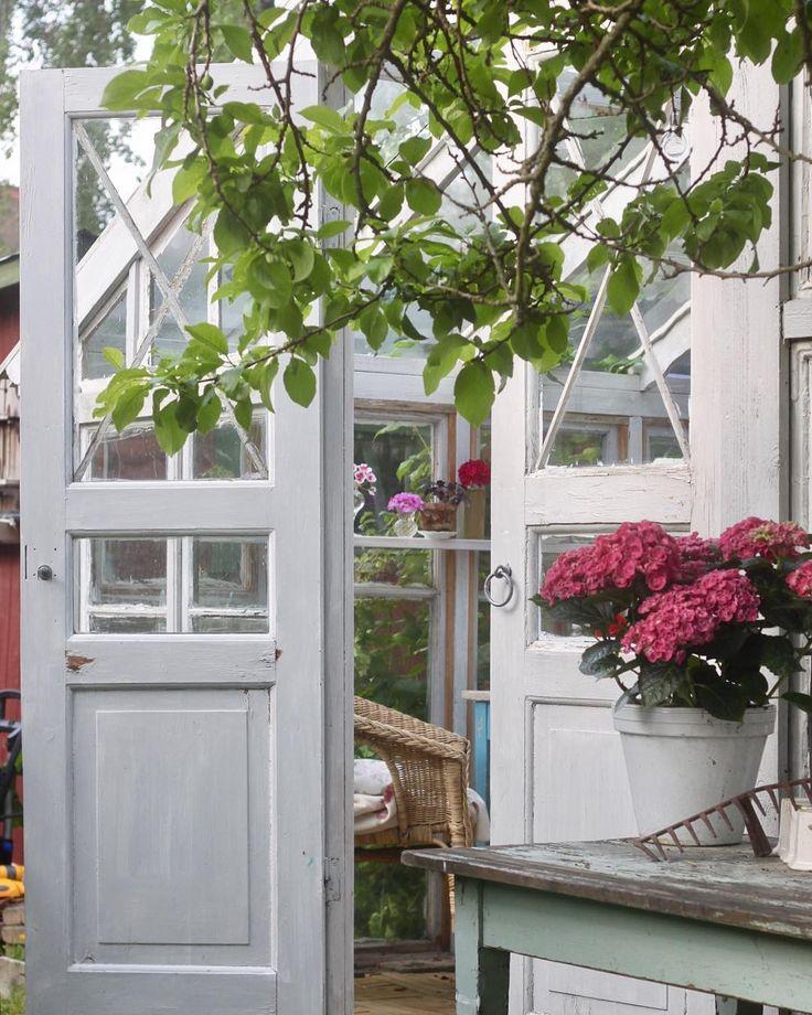 Idag får växthusets dörrar stå på vid gavel🌸  #växthus #greenhouse #vintagegarden #orangerie #orangeri #minträdgårdidag #mygarden #minträdgård #lantligt #skönahem #hortensia #swedishhome #sommar #summer #sunnymorning #nordichome #svensksommar #enskedegård #drömhemochträdgård #hemochantik #trädgård