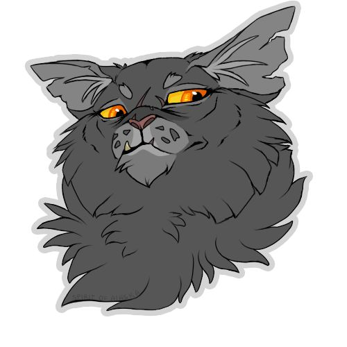 Warriors Fire And Ice Book: 17 Best Images About Yellowfang On Pinterest