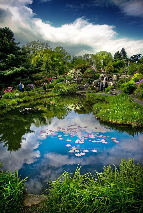 Oslo Botanical Garden, Norway (by Faisal!)