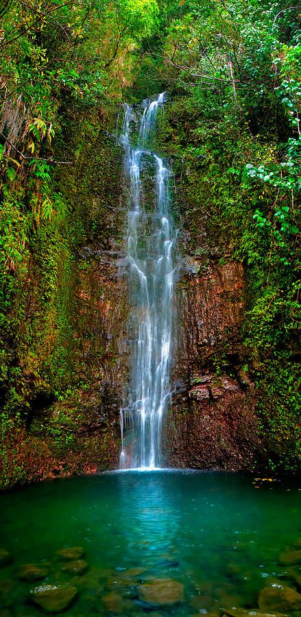 ~~Serene Waterfall ~ lush emerald waterfall, Maui, Hawaii by Monica and Michael Sweet~~
