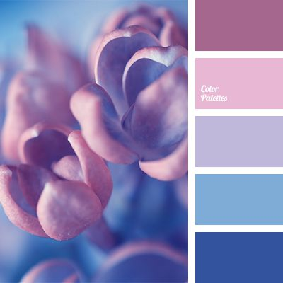 Azure dark blue and dark blue are in harmony with pink and violet. This palette is perfect for decoration of bedroom. These colours will calm and they'll h.