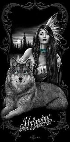 DAVID GONZALES ART DGA HARMONY NATIVE GIRL WOLF NATURE PEACE 30X60 BEACH TOWEL