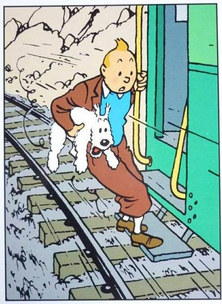 A punto para tirarse a agua...  Tintin and Snowy.