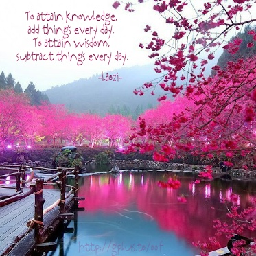 Quote of the Day: To attain knowledge, add things every day. To attain wisdom, subtract things every day. --Laozi
