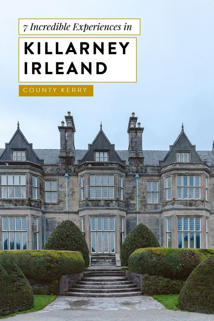 7 fun things to do in Killarney, Ireland. County Kerry's most magical town! From shopping to food to Irish pubs to outdoors activities. #irelandtravel #ireland visit ireland, ireland things to do, ireland photos, ireland travel, ireland landscape, ireland travel tips, killarney national park, killarney ireland