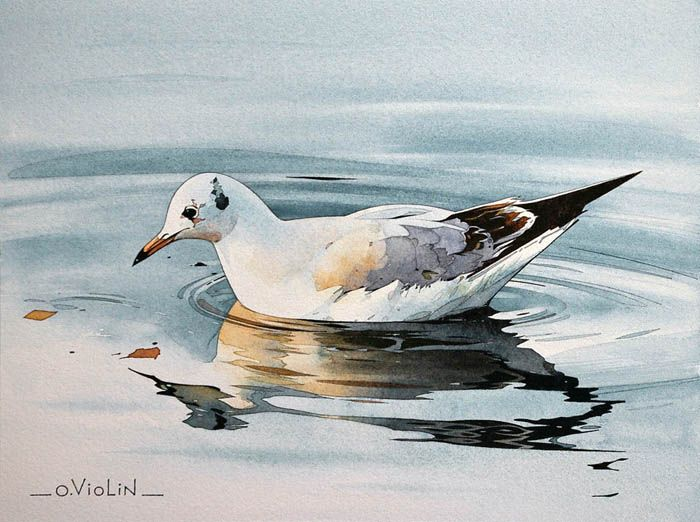 aquarelle dessin paysage marine voilier pin up chaton bretagne Olivier violin
