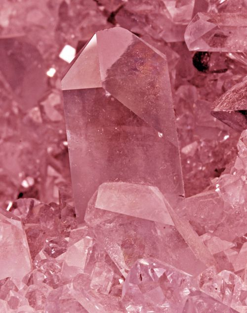 I do believe these are gorgeous rose quartz points! Más