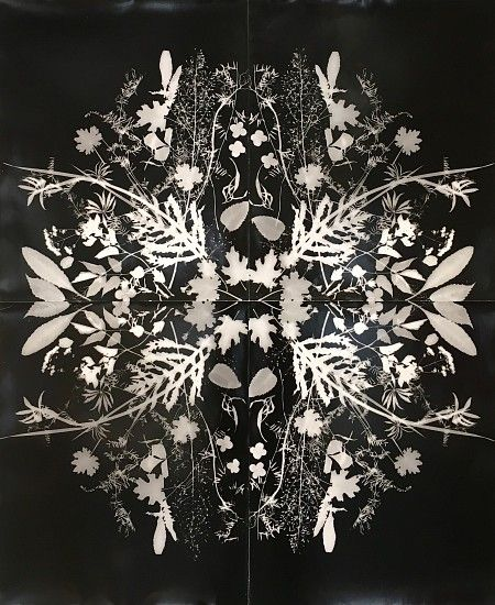 Wendy Small, Remedy 2014, black and white photogram