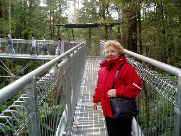 OTWAY FLY.....This treetop walk through the Otway forest is a wonderful experience.  Lil and I visited it last year (2014) staying nearby at Wye River on the Great Oceon Road.  We will be going again soon this time staying at Apollo Bay.