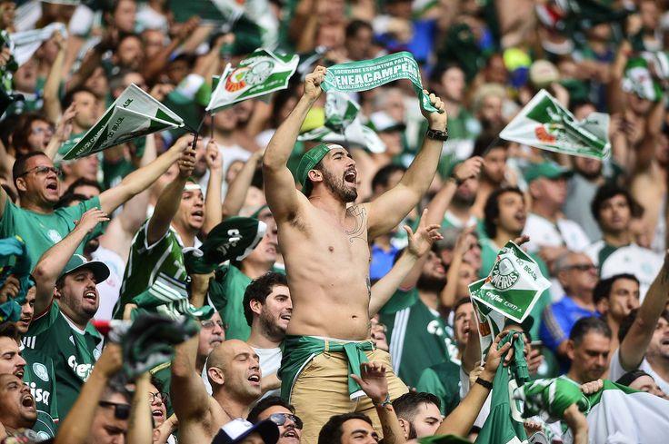 Jogo do título registra o maior público da história do Palmeiras no Palestra #globoesporte