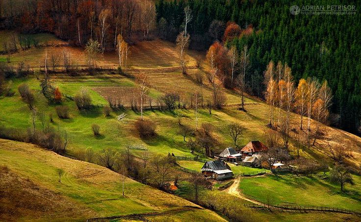 village:Rural homes in the Apuseni Mountains, Romania