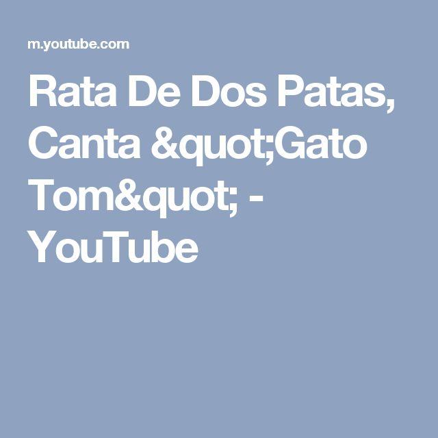"""Rata De Dos Patas, Canta """"Gato Tom"""" - YouTube"""