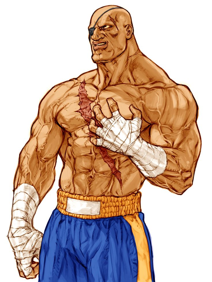 - Fatos Correntes - 3a35a09b38bdb10a75208ad1152a1230--street-fighter-alpha-sagat