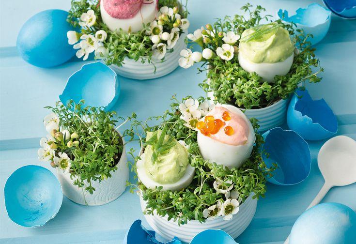 Die besten 25 eier abschrecken ideen auf pinterest perfekte hartgekochte eier senfeier so e - Eier hart kochen ...