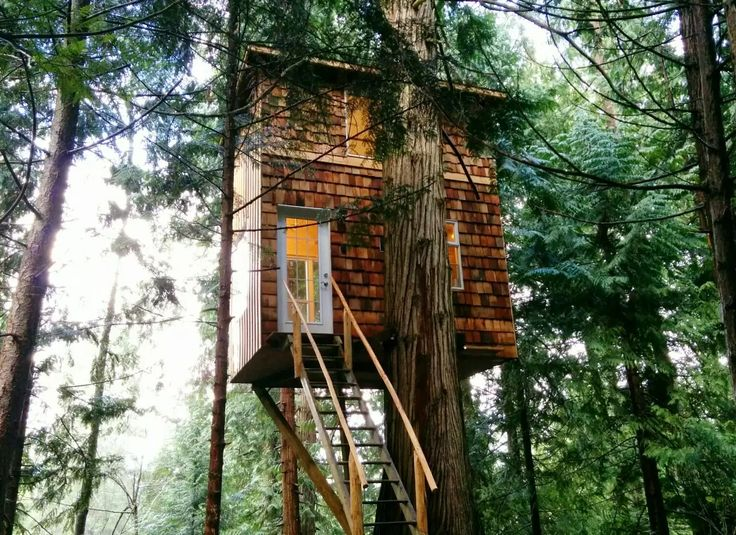 9 bc tree houses for rent