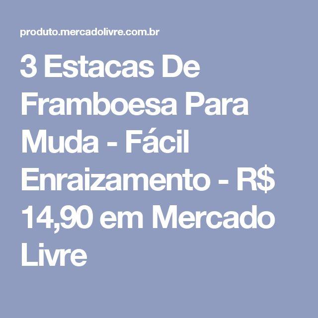 3 Estacas De Framboesa Para Muda - Fácil Enraizamento - R$ 14,90 em Mercado Livre
