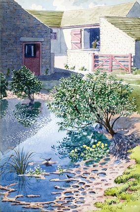 Duckpond. C. F. Tunnicliffe