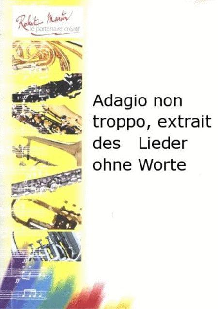 Adagio Non Troppo, Extrait des Lieder Ohne Worte
