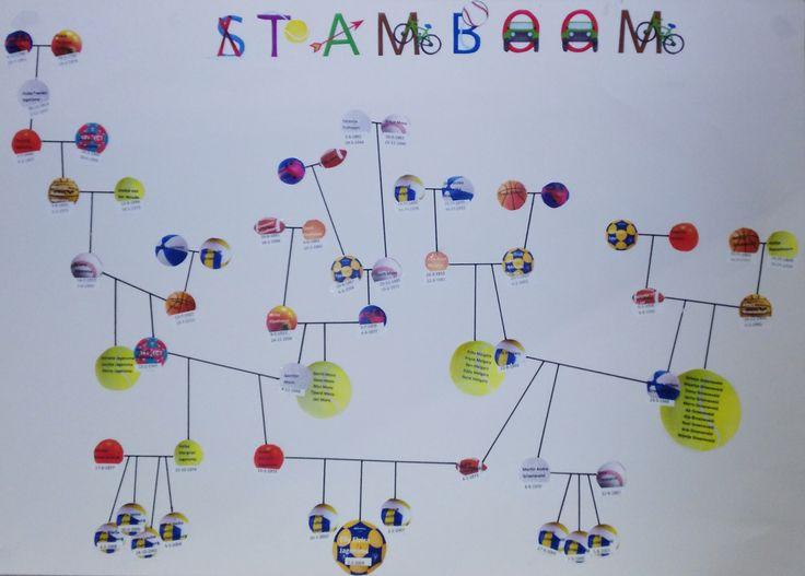 Stamboom. Groep 8