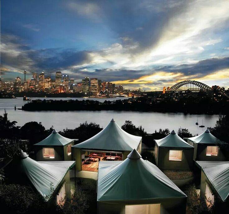 """Taronga Zoo / Overlooking  Sydney Harbour. """"Roar 'N Snore"""". The worlds best sleep over!"""