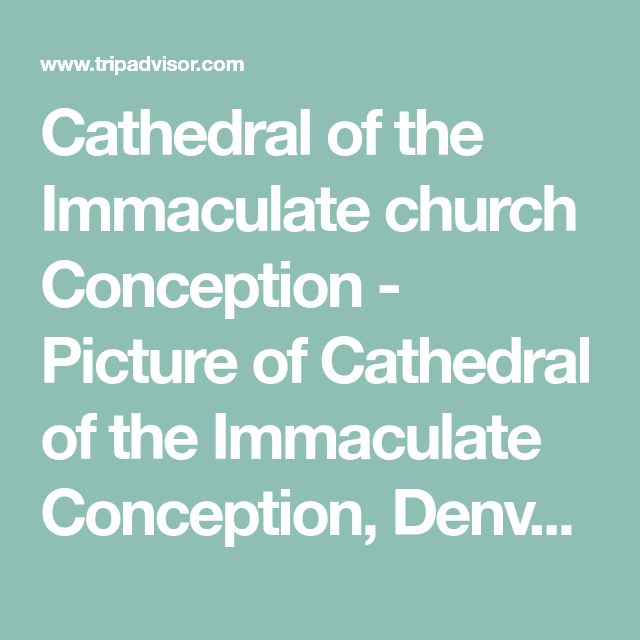 Cathedral of the Immaculate church Conception - Picture of Cathedral of the Immaculate Conception, Denver - TripAdvisor