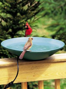 WBU Heated Bird Bath with EZ-TILT-TO-CLEAN™ Deck Mount picture