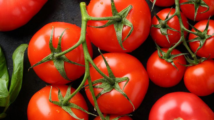 5 Amazing Health Benefits of Eating Tomatoes