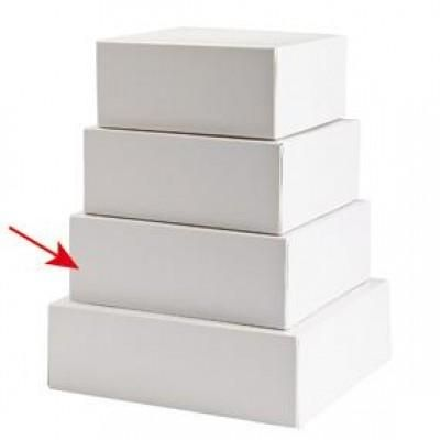 Doos voor taart en gebak - wit  - 22x22x8cm -  per 50 stuks-