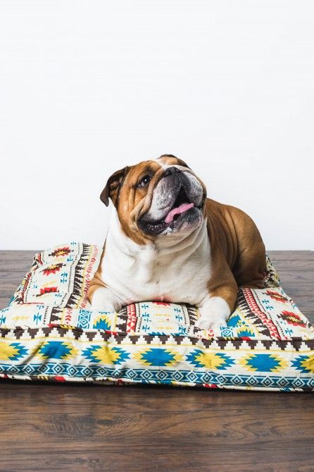 This EB exclusive, Southwest inspired dog duvet adds functional design to your space for you and your pet. #earthboundtrading #pets #dogs