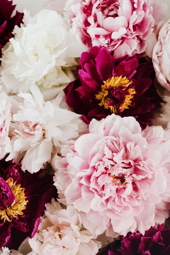 Floral // Pink, Yellow & White
