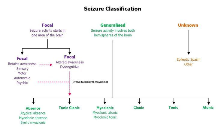 seizure charts for school - Yahoo Image Search Results