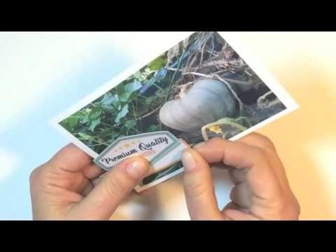 Kitaholic Kits - June kits - Project life Process Video with Deb
