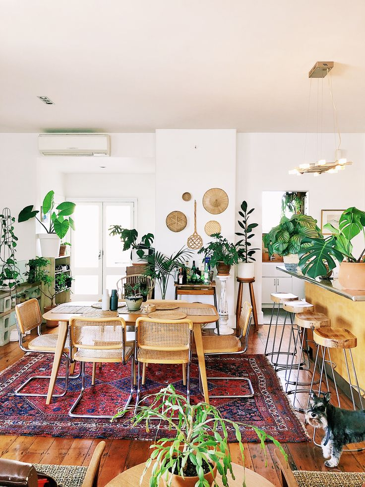 Plant Addicts Will Love This Old Factory Home In New Zealand
