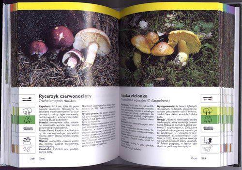 http://www.empik.com/atlas-grzybow-fluck-markus,p1122776998,ksiazka-p