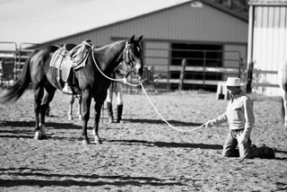 "Buck Brannaman, working his horse ""on a feel."""