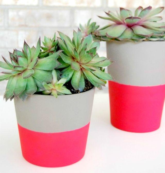 I Spy DIY: [DIY Home Inspiration] Pop of colorPlants Can, Neon, Painting Pots, Outdoor Room, Flower Pots, Painted Pot, Diy,  Flowerpot