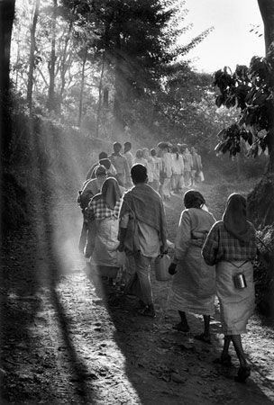 Coffee farm. Ossoor Estates. Karnataka State, South India, January 2004. Photo by Sebastião Salgado for illy.