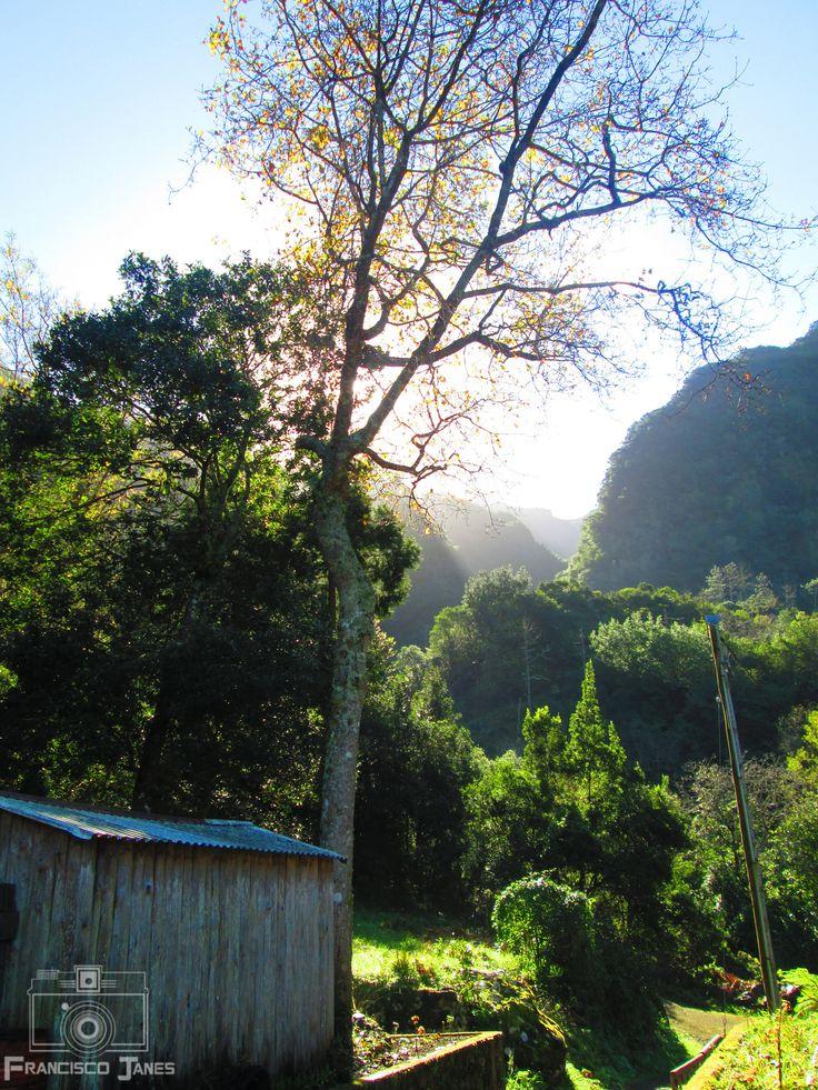 Visit Madeira Island - null