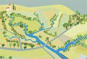 Fáze revitalizace povodí