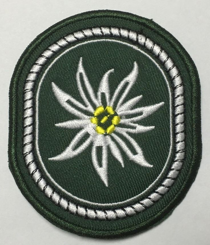 WWII GERMANY ARMY MOUNTAIN DIVISION INFANTRY EMBROIDERY GREEN PATCH