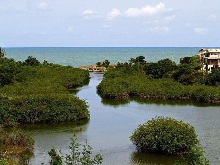 Azul navegantes nvt to recife rec just us 87 economy