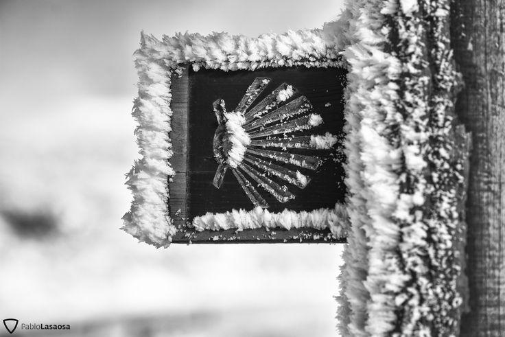 Marca del Camino en Navarra en invierno (Pablo Lasaosa). Camino de Santiago