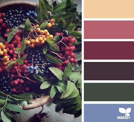 Color Picks