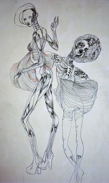 a-me-lia:  illustration by molly grad