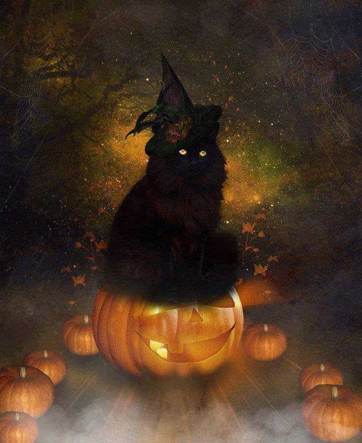 23 Best Halloween Themed Desktop Wallpapers Images On