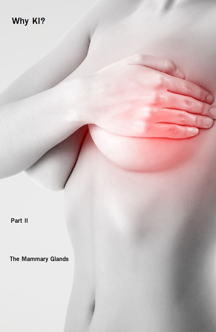 Why KI? Part II by Zen Haus. Iodine Supplements.  Why Potassium Iodide is preferred for breast tissue and the mammary glands.