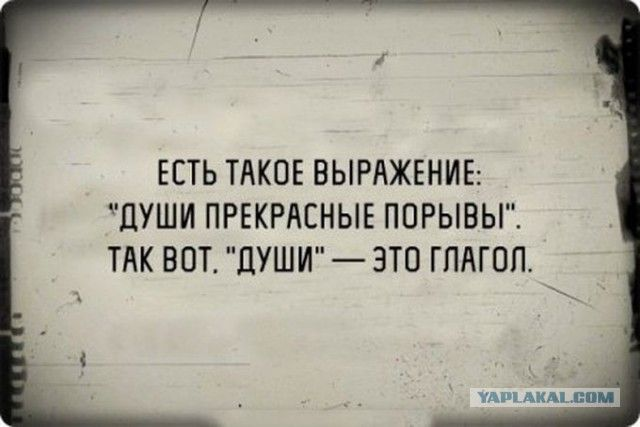 Цитаты, черный юмор